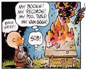 Snoopfire